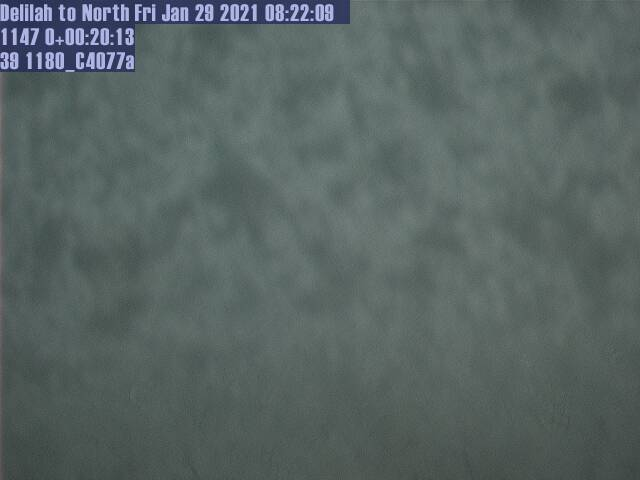 Delilah WebCam #1 - North